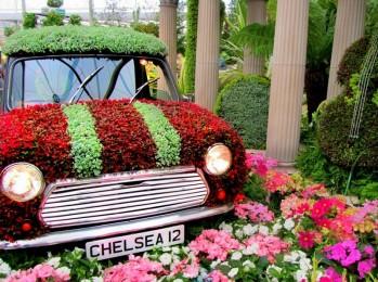chelsea blomsterudstilling