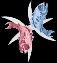 Fisk stjernetegnet fisken
