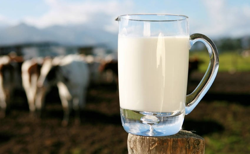 minimælk er sundt