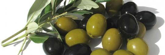 oliven er sunde