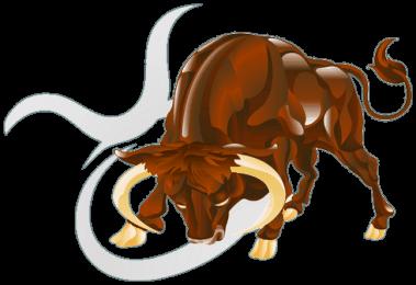 Tyr stjernetegnet tyren