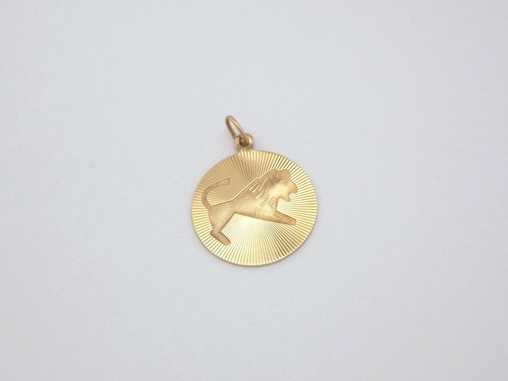 TYR Guld vedhæng stjernetegn smykke (7)