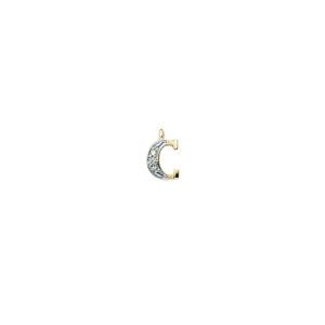 224-003 C Guld Vedhæng bogstav brillanter 14 karat - Køb bogstav halskæde C i guld billigt